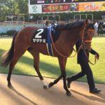 京都牝馬S:サザナミは6枠7番