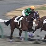 4/28京都2R:スターリーパレードは7枠10番