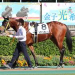2/16東京2R:ルヴァンヴェールは積極的騎乗で優勝