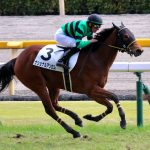 2/22東京5R:ナショナルアンセムは競馬にならず殿負け